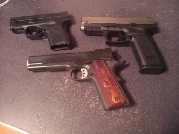 springfield-gun-rights-5.jpg